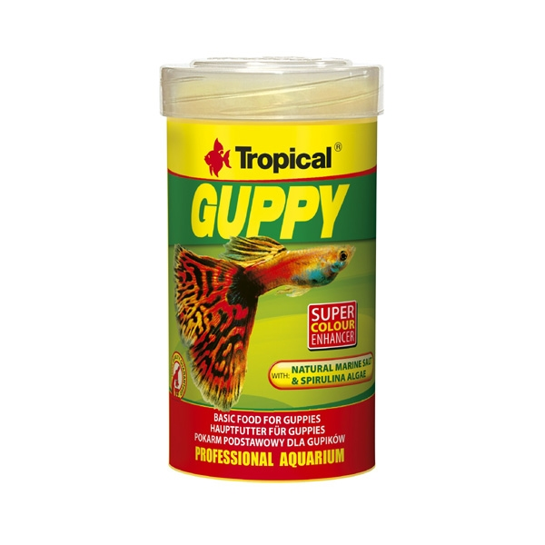 Tropical Guppy